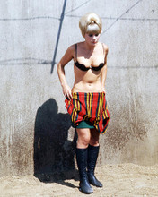 This is an image of Photograph & Poster of Elke Sommer 291802