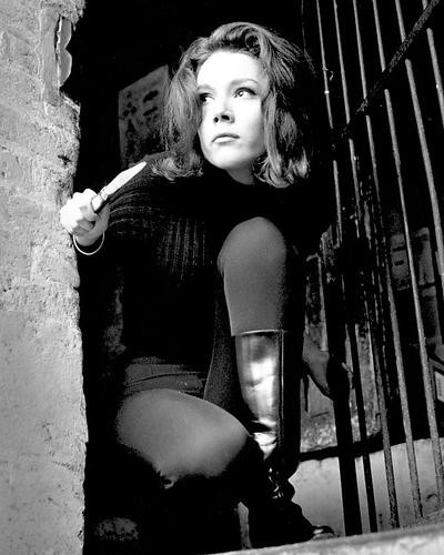 This is an image of Photograph & Poster of Diana Rigg 199940
