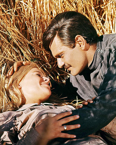 This is an image of Photograph & Poster of Doctor Zhivago 292062