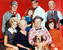 This is an image of Photograph & Poster of Petticoat Junction 292733