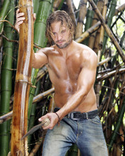 This is an image of Photograph & Poster of Josh Holloway 292476