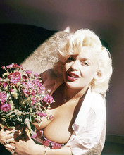 This is an image of Photograph & Poster of Jayne Mansfield 292874