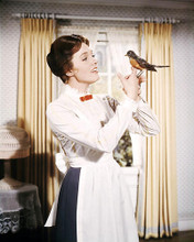 This is an image of Photograph & Poster of Julie Andrews 292986