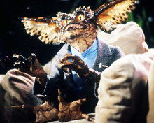 This is an image of Photograph & Poster of Gremlins 293220