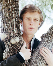 This is an image of Photograph & Poster of Peter Fonda 293256
