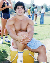 This is an image of Photograph & Poster of Lou Ferrigno 293354