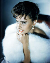 This is an image of Photograph & Poster of Sophia Loren 293374