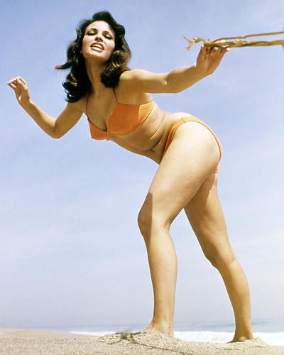 This is an image of Photograph & Poster of Raquel Welch 293662