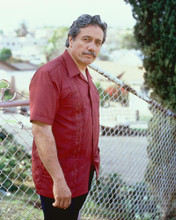 This is an image of Photograph & Poster of Edward James Olmos 252081