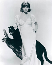 This is an image of Photograph & Poster of Elsa Martinelli 190099