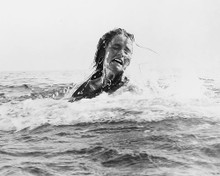 This is an image of Photograph & Poster of Jaws 189026