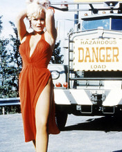 This is an image of Photograph & Poster of Valerie Perrine 293901