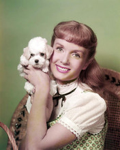 This is an image of Premium Photograph & Poster of Debbie Reynolds 294157