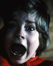 This is an image of Photograph & Poster of The Shining 296592