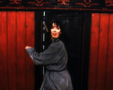 This is an image of Photograph & Poster of The Shining 296618