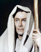 This is an image of Premium Photograph & Poster of Peter Otoole 295559