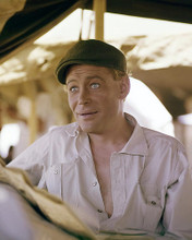 This is an image of Premium Photograph & Poster of Peter Otoole 295592
