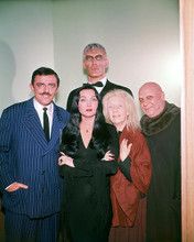 This is an image of Photograph & Poster of The Addams Family (1964) 294479