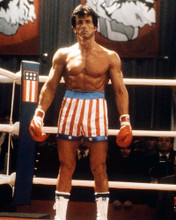 This is an image of Photograph & Poster of Sylvester Stallone 296663