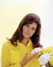 This is an image of Photograph & Poster of Raquel Welch 296736