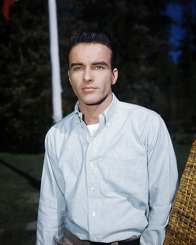 This is an image of Premium Photograph & Poster of Montgomery Clift 294860
