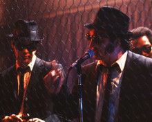 This is an image of Photograph & Poster of The Blues Brothers 295958