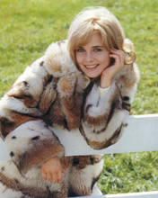 This is an image of Photograph & Poster of Sue Lyon 297486