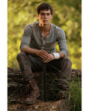 This is an image of Photograph & Poster of Dylan O'Brien 297170