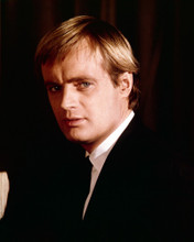 This is an image of Photograph & Poster of David McCallum 297780