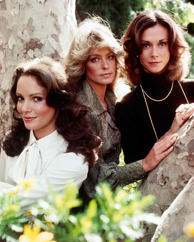This is an image of Premium Photograph & Poster of Charlies Angels 297793