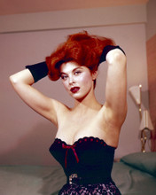 This is an image of Premium Photograph & Poster of Tina Louise 297801