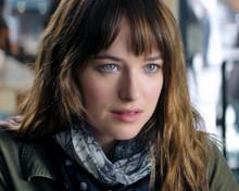 This is an image of Photograph & Poster of Dakota Johnson 297919