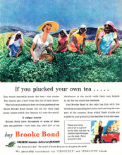This is an image of Vintage Reproduction of Brooke Bond 297337