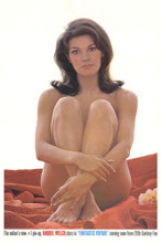 This is an image of Vintage Reproduction of Raquel Welch 295347