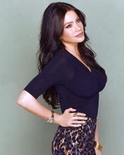 This is an image of Photograph & Poster of Sofia Vergara 285772
