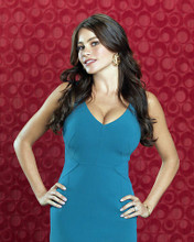 This is an image of Photograph & Poster of Sofia Vergara 289345