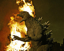 This is an image of Photograph & Poster of Godzilla: Tokyo S.O.S. 290689