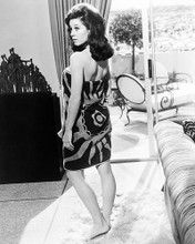 This is an image of Photograph & Poster of Sherry Jackson 196470