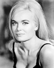 This is an image of Photograph & Poster of Shirley Eaton 195904