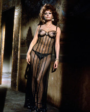 This is an image of Photograph & Poster of Sophia Loren 286304