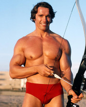 This is an image of Photograph & Poster of Arnold Schwarzenegger 286327