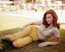 This is an image of Photograph & Poster of Tina Louise 286330