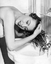 This is an image of Photograph & Poster of Sylva Koscina 196448