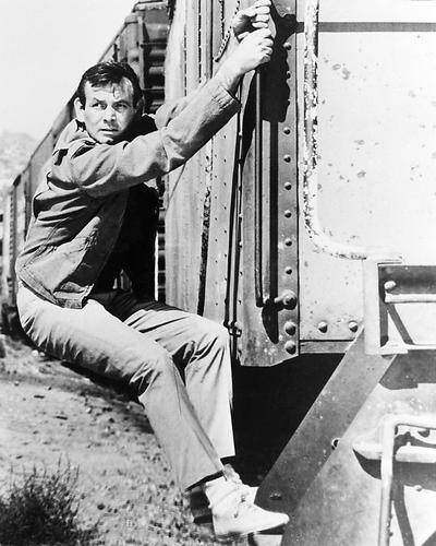 This is an image of Photograph & Poster of David Janssen 195918