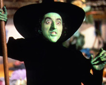 This is an image of Photograph & Poster of The Wizard of Oz 286840