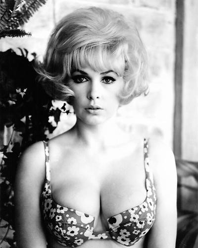 This is an image of Photograph & Poster of Stella Stevens 196171