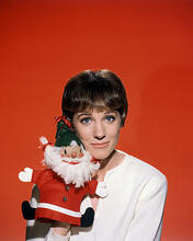 This is an image of Photograph & Poster of Julie Andrews 286508