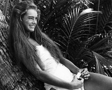 This is an image of Photograph & Poster of Brooke Shields 195997