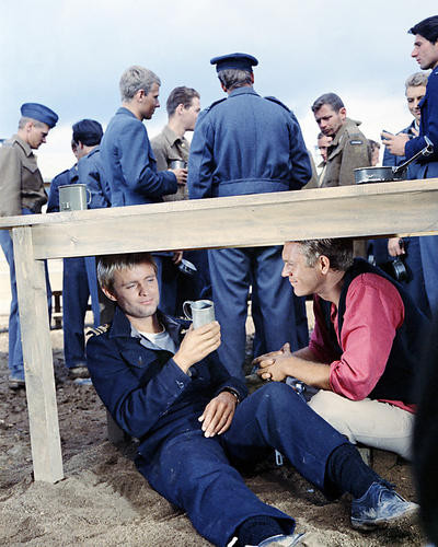 This is an image of Photograph & Poster of The Great Escape 286586