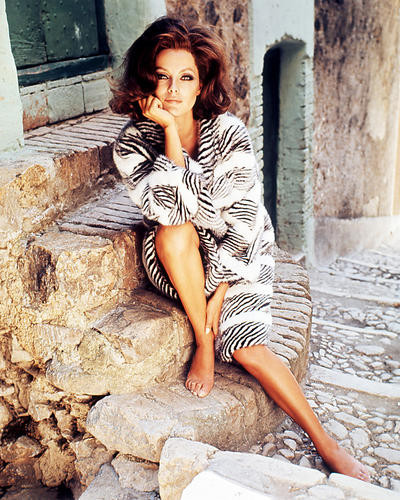 This is an image of Photograph & Poster of Virna Lisi 286882